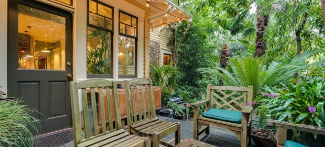 Peek Inside: A Tropical Oasis Thrives At A Classic Portland Foursquare