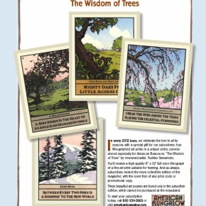 American Bungalow's Seasonal Lithogrpah Art Prints for 2012