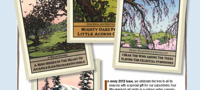 American Bungalow's Seasonal Lithogrpah Art Prints for 2012